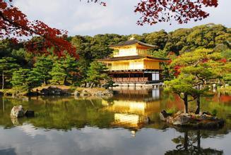 京都市·东寺前公寓